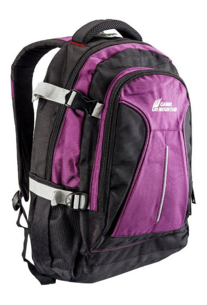Camel Mountain Backpack Laptop Bags